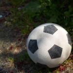 サッカー日本代表がフランス&ブラジルと対戦〜munejyuka日記