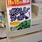 今年も11月15日にボジョレーヌーボーが解禁になったねん!〜munejyuka日記