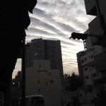今日の朝の空〜munejyuka日記-2011/11/10