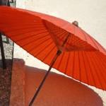 ダイソーで傘を買ったねん〜munejyuka日記