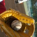 2013年プロ野球セリーグの順位予想をしてみたねん~munejyuka日記