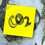 Ho cercato la parola carbonio zero! L'obiettivo zero carbonio entro il 2050!